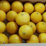 国産ベルガモットオレンジ