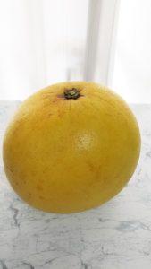 晩白柚 バンペイユ