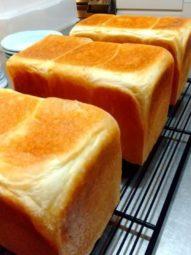 パン教室:角食パン