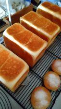 パン教室へ:角食パン 点心ちゅん